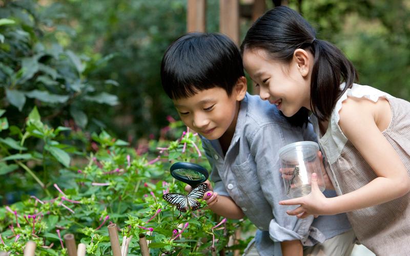 Bermain di Alam Dapat Membuat Anak Lebih Responsif Pada ...