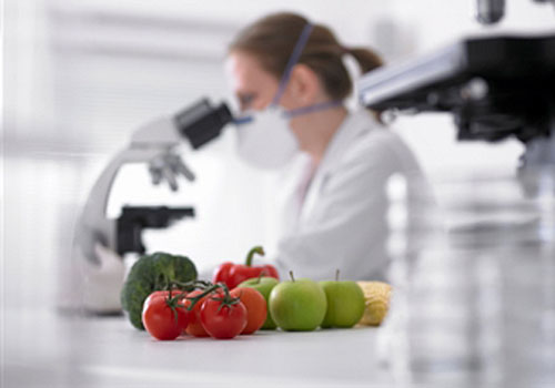 Ragam Tujuan Rekayasa Genetika