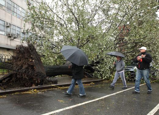 Sandy Datang, Warga Pun Resah