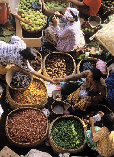 Slow Food: Menantang Konsep Fast Food