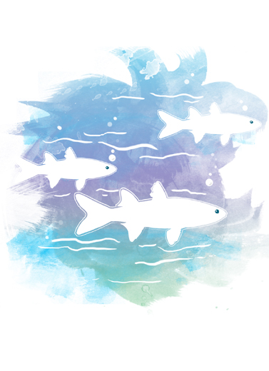 Perempuan Ikan Bolu