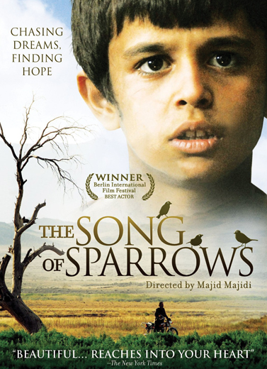 The Songs of Sparrow