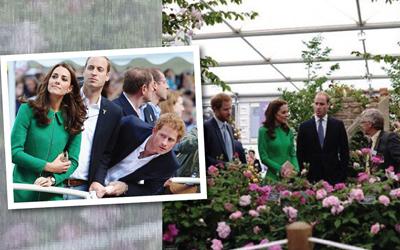 7 Momen Ketika Pangeran Harry Jadi 'Orang Ketiga' Pangeran William dan Kate Middleton