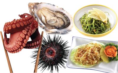 5 Makanan Laut Yang Bermanfaat Dan Aman Dikonsumsi