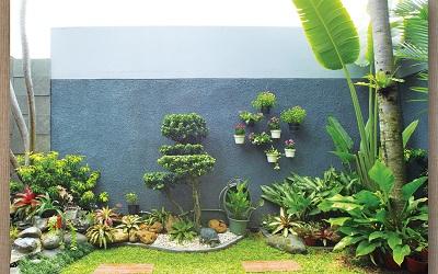 Inspirasi: 3 Taman di Rumah Mungil, Dari Tanaman dalam Pot Hingga Vertical Garden Indoor
