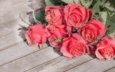Air Mawar Antiseptik Alami Yang Bermanfaat untuk Kecantikan