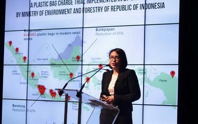 Tiza Mafira, Perintis Gerakan Diet Kantong Plastik Indonesia Mendapat Apresiasi Badan Lingkungan PBB
