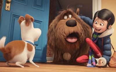 The Secret Life of Pets, Film Animasi Keluarga