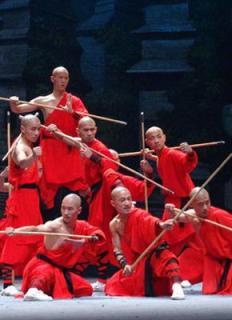 Sayembara Shaolin Warrior