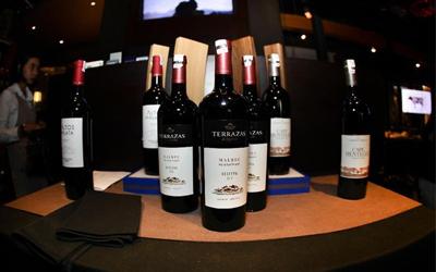 Sensasi Mencicipi Wine Terrazas des los Andes dari Argentina