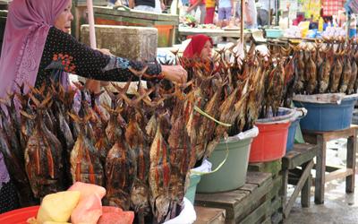 Berburu Ikan Asap di Ambon