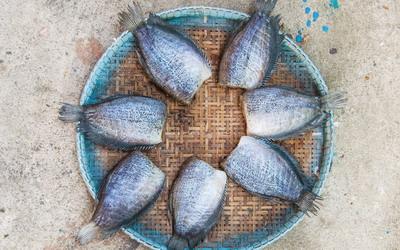 Ikan Asin, Makanan Favorit Semua Strata dan Usia