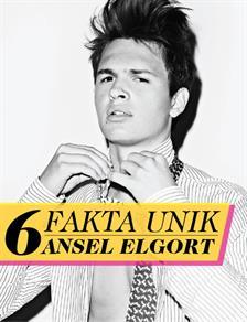 6 Fakta Unik Ansel Elgort